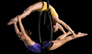 rouge aerial dance charlotte