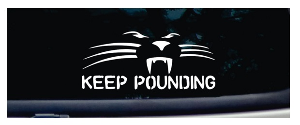 panther car decal gifts for panthers fans