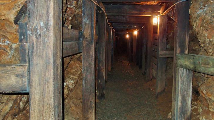 reeds gold mine