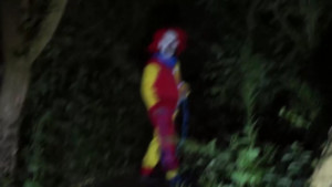 clown in woods south carolina