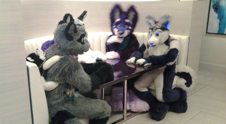 furries at a table