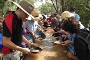 north carolina gold panning competition