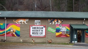americas-first-house-cat-museum