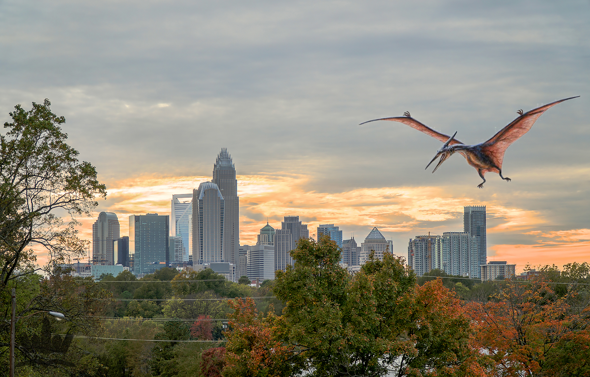 Move Over Hollywood: Where Celebrities in Charlotte live